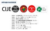 【正規品/送料無料】カプラ200(KAPLA200)(白木200枚)遊び方ガイドブック付き