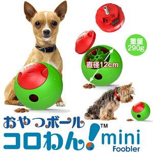 犬 おもちゃとして【まちかど情報室】で紹介されました! 小型犬用miniサイズ。あなたの愛犬/ワ...