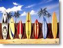 ■サーフボードいっぱい★波乗り系★アメリカンブリキ看板★