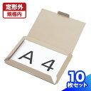 【送料無料】レターパック ピッタリサイズ A4 299×21