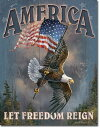 1668Ted Blaylock America Freedom星条旗...
