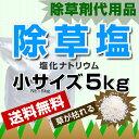 Na5kg-s2