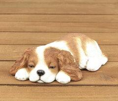 うたたね キャバリア QY-108 19.5cm 寝そべってる姿がso cute! おしゃれなオブジェ オーナメント[ガーデン屋]