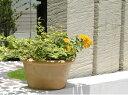 スペイン鉢 カリーナ 13cm テラコッタ 植木鉢 素焼き鉢 陶器鉢 ...