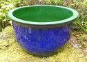 ☆新製品でお買い得☆大型睡蓮鉢青龍50cm17号青色陶器製ビオトープ創りに!メダカや金魚に最適な睡蓮鉢です!ウォーターガーデン