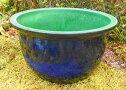 ☆新製品でお買い得☆中型睡蓮鉢青龍42cm13号青色陶器製ビオトープ創りに!メダカや金魚に最適な睡蓮鉢です!ウォーターガーデン