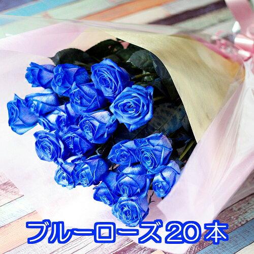 ブルーローズ 花束 20本 オランダ産の青いバラ 母の日 ギフト 送別 カーネーション