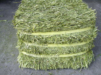 In world ◆ ◇ drying only ◇ ◆ Canada produced ハイミネラルチモシー (grass) 14 kg