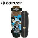 CARVER/カーバー BLUE RAY ブルーレイ 30インチ CX4トラック サーフスケート ロンスケ オフトレ スケート サーフィン
