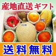 ギフト 送料無料季節のフルーツ盛り合わせ(2-3kg)【産地直送 高級ギフト のし 熨斗対応】02P27May16