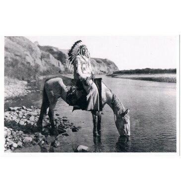 ネイティブ ポストカード 写真 カナダ 先住民 インディアン 雑貨 [ BLACK FOOT CHIEF AT BOW RIVER ]
