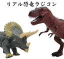 リアル 恐竜 ラジコン 歩行 簡単 操作 子供向け 赤外線 通信 コンパクト - GoodsLand