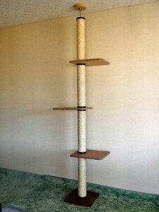 キャットタワー ブラウン スペース