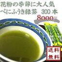 【 花粉症の皆さま必見! べにふうき緑茶 1.2g×300本...