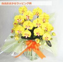 開店祝いギフト胡蝶蘭造花光触媒ミディ2本立花の色全10色送料無料花のサイズ6cm豪華仕様ギフト敬老の日ビジネスP20Aug1602P29Aug16