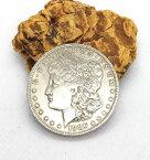 coin-3 モーガン(モルガン)1ドルコイン【シルバー900】本物銀貨【1886年】アクセサリー 材料 パーツ クラフト コンチョ