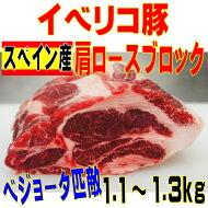 イベリコ豚ベジョータ匹敵肩ロース1.1〜1.3kgブロックバーベキュー・焼肉最適
