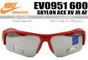 Ev0951-600-nks027a