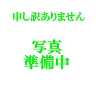 光触媒胡蝶蘭大輪【10本立】バイオレット