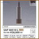 Sap40510l