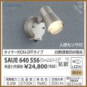 Saue640556