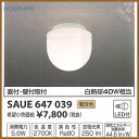 Saue647039