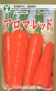紅色鮮やか!品質良好!春・夏まき兼用品種【人参】アロマレッド (トーホク) コート種子1万粒