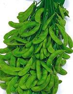 【予約注文商品(16年1月下旬出荷予定)】【枝豆種子】おつな姫 枝豆 1dl (サカタのタネ)…
