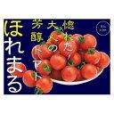 ミニトマト種子渡辺農事ほれまる100粒