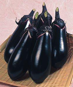 千両二号 茄子種子 (タキイ種苗) 小袋(60粒)【野菜の種】
