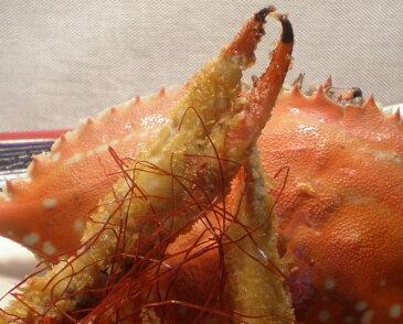 「活」北海道産「ワタリ蟹」3Kg入り   【RCP】 10P05Sep15