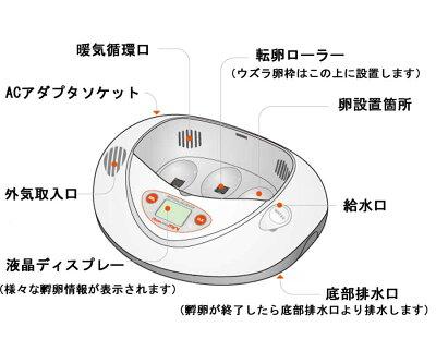 リトルママ 小型自動孵卵器(ふ卵器・ふ卵機) 画像2
