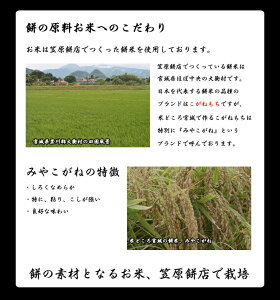 あんこ餅4個入×2パック【冷凍】送料無料あんこもちこしあんこし餡