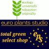 観葉植物 ユーロプランツスタジオ