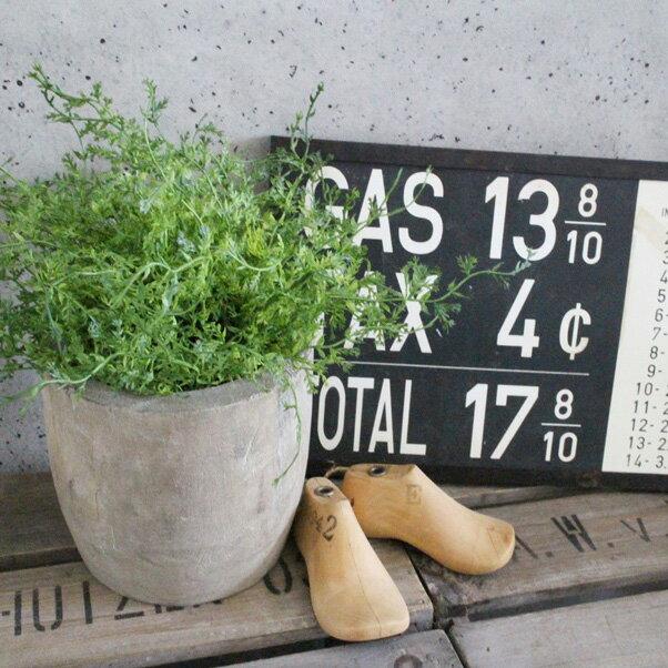 【いなざうるす屋 フェイクグリーン】モフモフドーム 壁飾り 壁掛けインテリア 観葉植物 ウォールデコレーション 緑 壁掛け インテリア イミテーショングリーン 模様替え 癒し プレゼント 引越し 一人暮らし 祝い ギフト