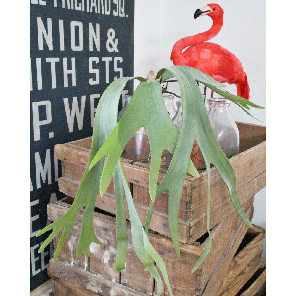 【いなざうるす屋 フェイクグリーン】コウモリランS 壁飾り 壁掛けインテリア 観葉植物 ウォールデコレーション 緑 壁掛け インテリア イミテーショングリーン 模様替え 癒し プレゼント 引越し 一人暮らし 祝い ギフト