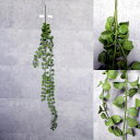 【いなざうるす屋 フェイクグリーン】垂れる丸い葉っぱ 壁飾り 壁掛けインテリア 観葉植物 ウォールデコレーション 緑 壁掛け インテリア イミテーショングリーン 模様替え 癒し プレゼント 引越し 一人暮らし 祝い ギフト