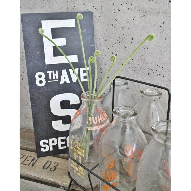 【いなざうるす屋 フェイクグリーン】ゼンマイ 壁飾り 壁掛けインテリア 観葉植物 ウォールデコレーション 緑 壁掛け インテリア イミテーショングリーン 模様替え 癒し プレゼント 引越し 一人暮らし お祝い おしゃれ 可愛い