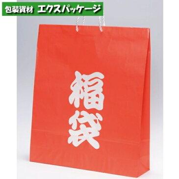 【パックタケヤマ】手提袋 アートバッグ 福袋 特大 XZT00600 100入 【ケース販売】