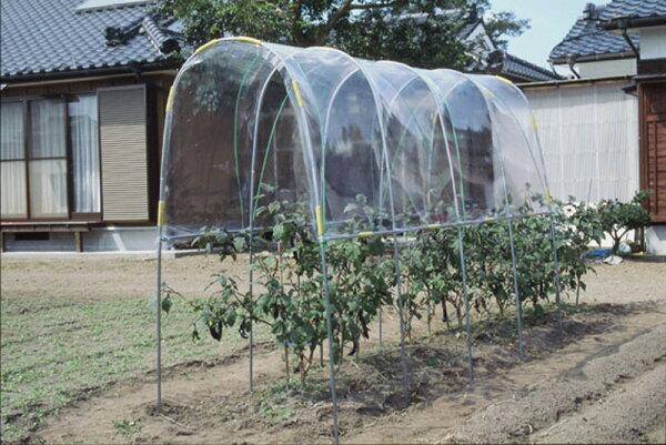ビニールハウス雨よけハウス組立セット間口1.2m×奥行3.6m×高さ2.0m1うね用5〜6株埋め込み式野菜家庭菜園法人も個人も