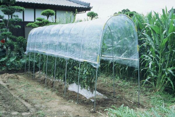 ビニールハウス雨よけハウス組立セット間口1.2mX奥行7.04mX高さ2.0m1うね用11〜12株埋め込み式野菜家庭菜園法人も個