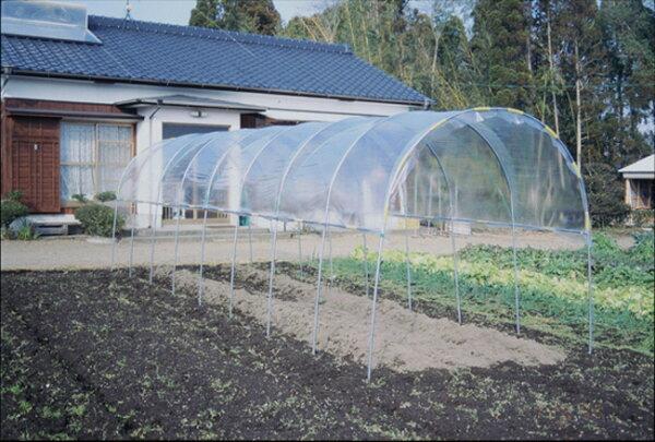 ビニールハウス雨よけハウス組立セット間口2.2mX奥行7.04mX高さ2.0m2うね用23〜24株埋め込み式野菜家庭菜園法人も個