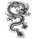 (ファンタジー) TheFantasy タトゥーシール タトゥーシール 龍 ドラゴン 肩・胸用 mqc04 【大型・A4】