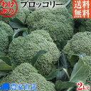 【特別栽培】訳ありB級品ブロッコリー量り売り2kg【農家直送】【8割減農薬栽培】【送料無料】