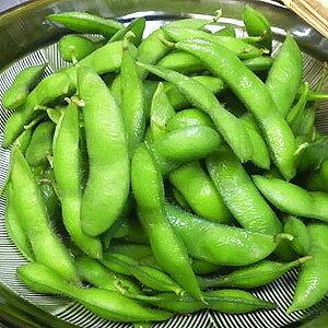 枝豆 冷凍枝豆【500g枝豆/おつまみ】
