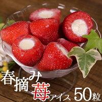 アイスクリーム業務用イチゴアイス春摘み苺アイス【20g×50粒いちごアイス】