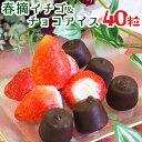 お歳暮 スイーツ アイスクリーム 洋菓子 アイス ギフト 送料無料 苺アイス 春摘み苺アイス&プチチョコアイス(40粒)