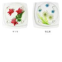 押し花コースター/アクリルコースター/花/テーブルウェア/フラワー/赤バラバーベナヒマワリアジサイクローバー