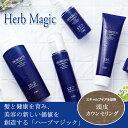 【送料無料】 フォードヘア化粧品 HM ハーブマジック システムトニック7 200ml 2