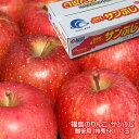 【ポイント10倍還元】おすすめ ギフト 福島のりんご サンふ